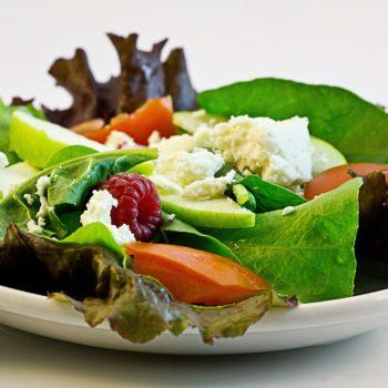 diet plan to lose weight